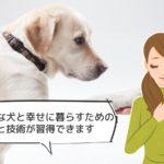 犬のしつけインストラクター資格