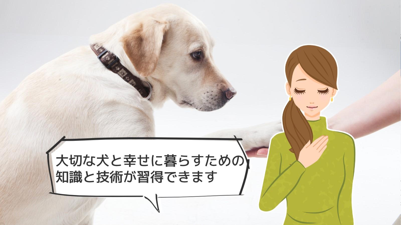 「犬のしつけインストラクター資格」のアイキャッチ画像